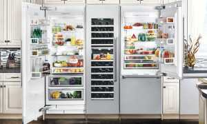 Рейтинг самых лучших холодильников на 2021 год